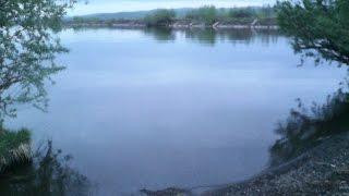 Базы отдыха на яузском водохранилище олеля