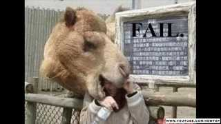 50 Epic Fail Pictures You Will Enjoy - 5