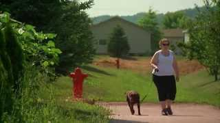 Gastric Bypass Surgery: One Patient's Journey - Mayo Clinic
