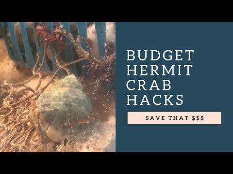 BUDGET HERMIT CRAB HACKS