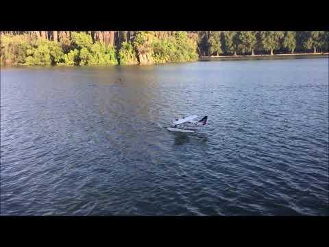 jimmy39s-bushmule-at-the-lake-yt