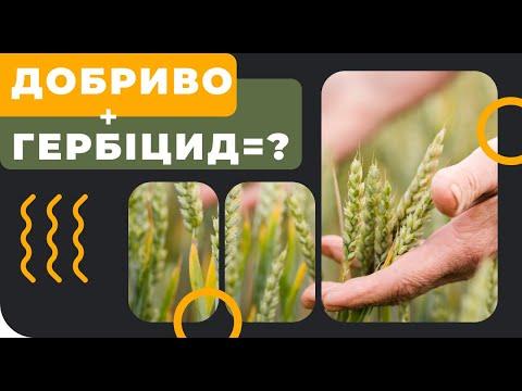 Можно ли добавлять удобрения к гербицидам?
