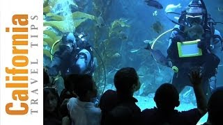 California Science Center - Free Things to Do in LA