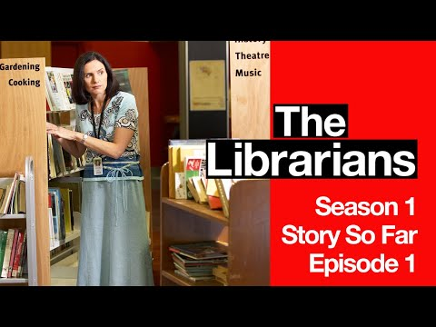 Humoristična serija The Librarians