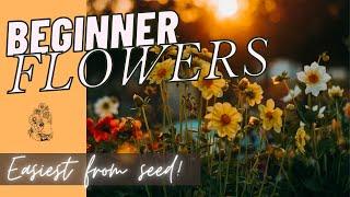 Favorite Flowers For Beginners: Growing Flowers From Seed Cut Flower Garden 🌼🌿🌸