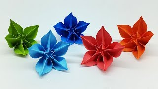 Origami Carambola Free Video Search Site Findclip