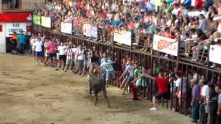 preview picture of video 'TOROS DE TORREJONCILLO DIÁ 13 DE AGOSTO DE 2014'