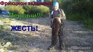 Как ловить сома на лягушку в реке