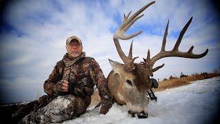 A Monster Buck Named Dagger