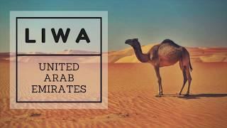 EMIRATI ARABI: ALLA SCOPERTA DEL DUNE BASHING