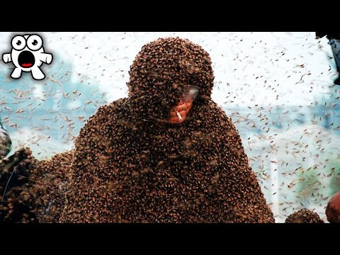 Top 10 CRAZIEST World Records OF ALL TIME!