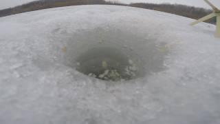 Ловля на поплавок зимой, не правильная оснастка, видео rybachil. ru