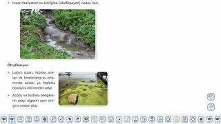 Eğitim Vadisi 10.Sınıf Biyoloji 18.Föy Güncel Çevre Sorunları Konu Anlatım Videoları