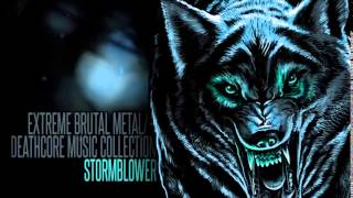 ► Extreme Brutal Metal/Deathcore Music Collection VI [Torment.] ☠ 1 Hour ☠