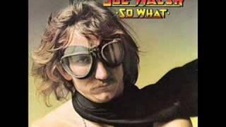 Welcome to the Club - Joe Walsh