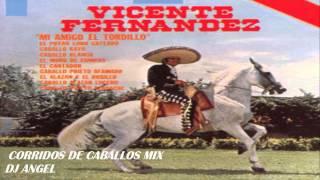 VICENTE FERNANDEZ CORRIDOS DE CABALLOS MIX