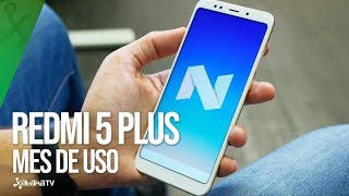 Xiaomi Redmi 5 Plus, tras un MES DE USO: puede ser el terminal más interesante de Xiaomi para 2018