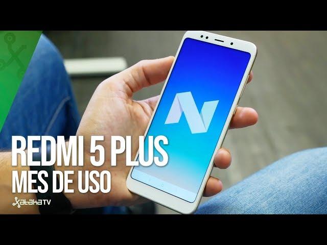 Xiaomi Redmi 5 Plus, tras un MES DE USO: puede ser el terminal más interesante de Xiaomi para 2018