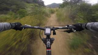 The Backbone Trail from the Hub to Will Rogers is great fun!