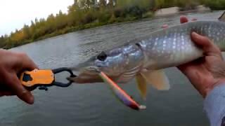 Тверской области рыбалка