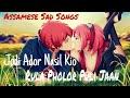 Jodi Ador Nasil Kio Rula Fulor Puli || 💔 Assamese Very Sad Songs