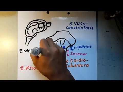Cirrosis del hígado hipertensión portal, ascitis Tratamiento