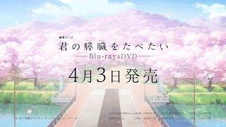 mqdefault - 劇場アニメ「君の膵臓をたべたい」Blu-ray&DVD発売決定PV