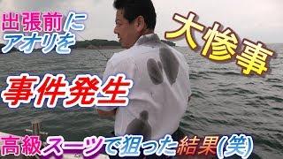 【大惨事】事件発生!出張前にアオリをスーツで釣りに行った結果とはww?