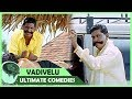 Vikram Vadivelu Comedy Scenes | Majaa movie