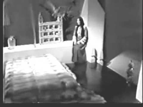 Cher-Bang Bang (My Baby Shot Me Down) 1966 Music Video.avi
