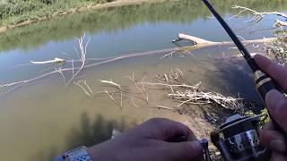 Рыбалка на реке прут