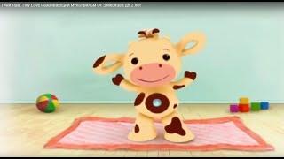 Тини Лав. Tiny Love   Развивающий  мультфильм  От 3 месяцев  до 2  лет