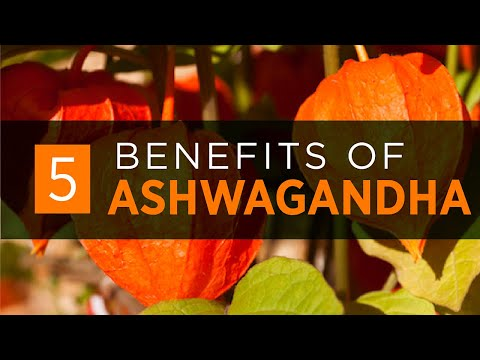 Ashwagandha: Benefits, Dosage & Side Effects