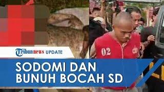 Seorang Pria Tega Sodomi Bocah SD dan Penggal Kepalanya, Buang Jasad Terpisah untuk Hilangkan Jejak