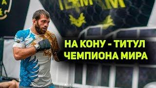 Дагестанцы оспорят чемпионские титулы в MMA-лиге Brave CF
