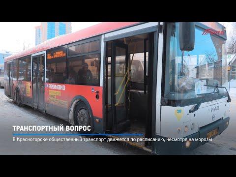 В Красногорске общественный транспорт движется по расписанию, несмотря на морозы