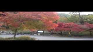 2012年岡山県紅葉情報宇甘渓