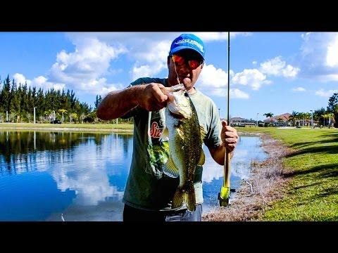 Agua Dulce Pesca con Mosca - Bass en Canales y Lagunas Video # 6 Florida USA