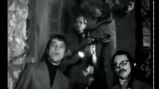 Plavci - Orchidej (1973)