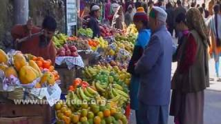 Fruits for all time