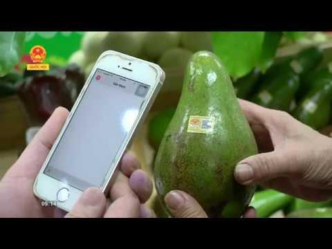 Biggreen thực phẩm sạch an toàn được truy xuất nguồn gốc bằng mã QR code
