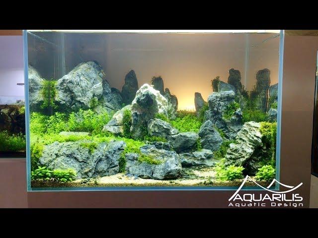 Sunset - Décor d'aquarium par Laurent Garcia, Aquarilis