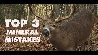 3 Things You're Doing Wrong with Deer Minerals