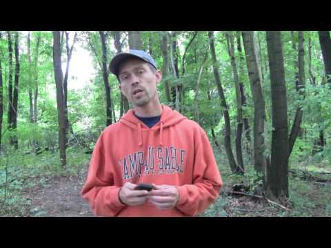 Video of Screebl - Screen On/Off Sensor