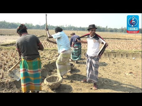 Mama Vagne Bengali full Movie - تنزيل يوتيوب