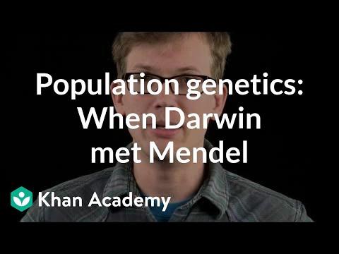 Population genetics: When Darwin met Mendel (video) | Khan