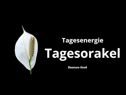 Tagesorakel Samstag  01.12.2018 -  Motto Abschied