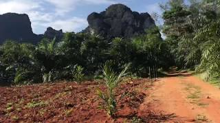 Beautiful Mountain Views from this 9 Rai Land for Sale in Khao Thong Krabi