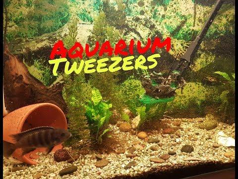 Aquarium Tweezers !