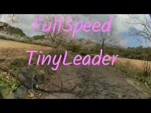 FullSpeed TinyLeader HDver 桜(cherry blossom)2